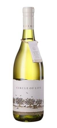 witte Zuid-Afrikaanse wijn